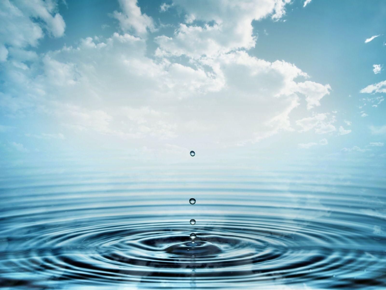 Hydrotherapy Swim Spa